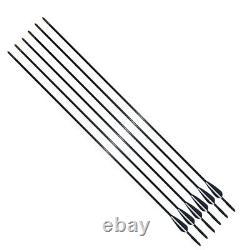 10/20/30/50/100PCS 31 Fiberglass Hunting Arrows Spine 750 Compound/Recurve Bow