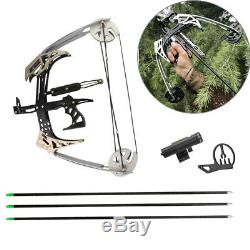 14 Mini Compound Bow Set 25lbs Bowfishing Hunting Archery Triangle Bow Arrows