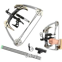 25lbs Mini Compound Bow Set 14 Triangle Bow Arrows Archery Hunting Fishing