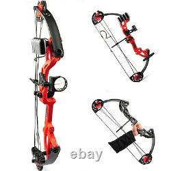 Archery Compound Bow 15-29 lbs Pro Right Hand Kit Bow Target Practice Hunting US