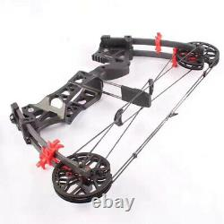 30-60lbs Compound Bow Steel Ball Pêche Chasse Catapulte Tir À L'arc À Double Usage M109e