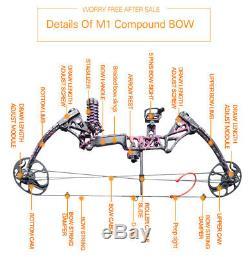 États-unis 10-50 Lbs M1 Femme Composé Chasse À L'arc Tir À L'arc Avec Le Paquet 18pcs Flèches