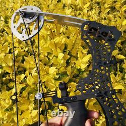 Mini Compound Bow 35lbs Sight Arrow Archery Tir Pêche Chasse Droite Gauche